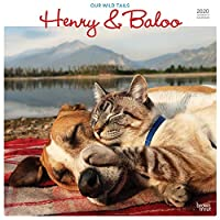 Henry & Baloo - Our Wild Tails 2020 12 x 12 Inch Monthly Square Wall Calendar, Outdoor Nature Dog Cat