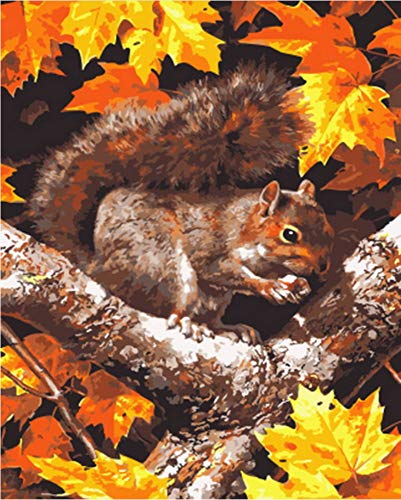(Canvas Wall Art Painting by Numbers Squirrel Picture Oil Wall Decor DIY Painting On Canvas for Home Decor 16X20In)