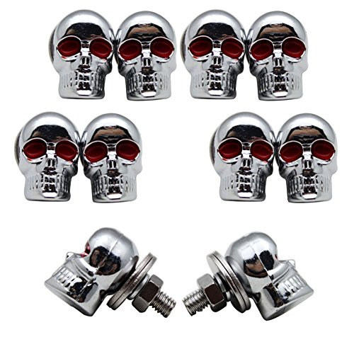 Mike Home Punk Skull License Plate Frame Screws for Modified Car/Motorcycle enthusiasts 10 Pcs (Silver)