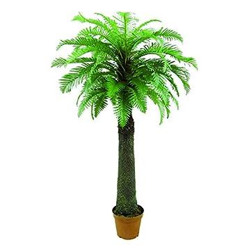 palme wedeln