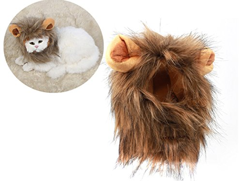 Lion Mane for Cat Appreal, Pet Costume Lion Mane Wig Pet Cat Caps Cat Hat Dress up with Ears by IN (Cozy Bunny Mascot Costumes)