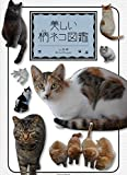 美しい柄ネコ図鑑