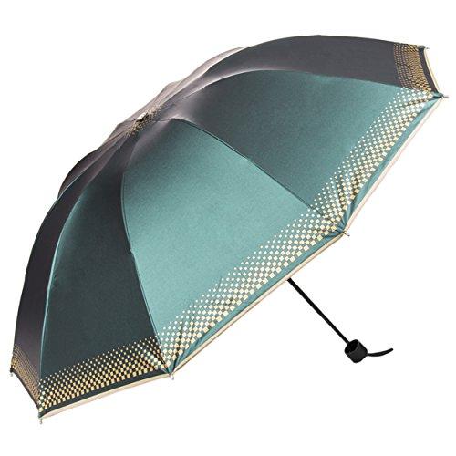 Aerusi Compact Rain/Uv Ray Resistant 10 Framed Travel Umbrella, Green