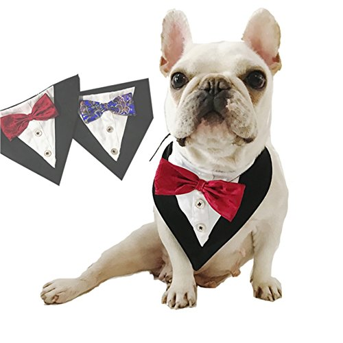 Stock Show Formal Small Medium Dogs Tuxedo Bandana Collar with Elegant Bowtie and Botton Adjustable Neckerchief for Wedding, Party, Costume, Gift and Birthday, Red ()