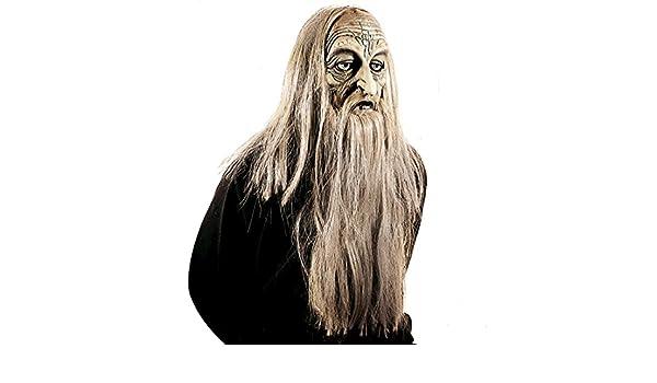 Antifaz de Viejo | Máscara de Mago con Pelo y Barba | Mascarilla Halloween | Careta Anciano con Pelo Largo: Amazon.es: Juguetes y juegos