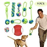 Kalolary Durable Pet Puppy Dog Chew Toys Set,Puppy Teething Ball Toys,Puppy Rope Toys, Dog Tug Toy, Frisbee Flying Discs Dogs Training (9 Pack)
