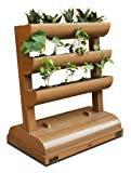 DC America City Garden CG-SP-392140-T Vertical Planter with Storage Box, 3 Shelves