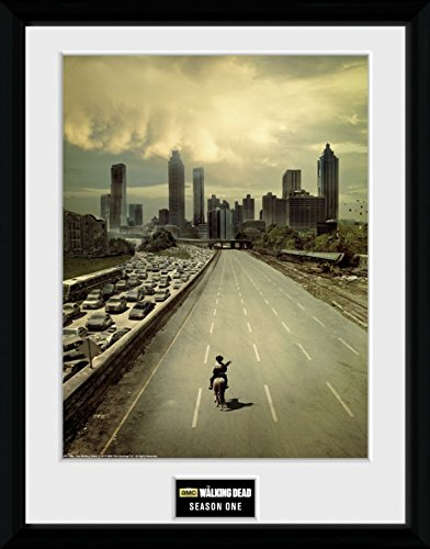1art1 The Walking Dead Framed Collector Poster - Season 1 (16 x 12 inches) from 1art1