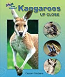 Kangaroos Up Close (Zoom in on Animals!)