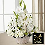 Funeral Flowers Special - Same Day Funeral Flowers Delivery - Condolence Flowers - Flowers For Funeral - Funeral Flower Arrangements - Funeral Plants