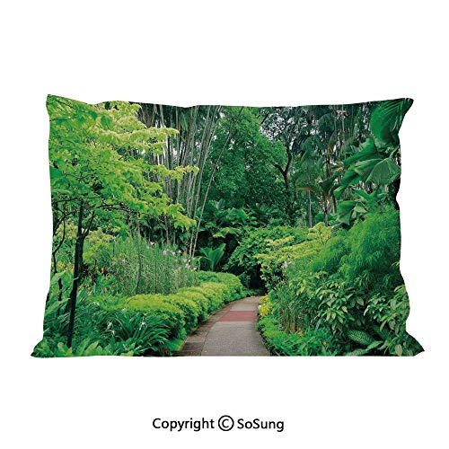 - SoSung Forest Bed Pillow Case/Shams Set of 2,Green Plants Trees in Singapore Asia Botanic Gardens Walkway Travel Destination Arboretum King Size Without Insert (2 Pack Pillowcase 36