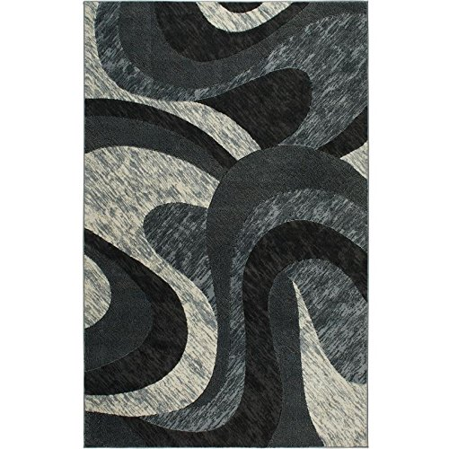 Home Dynamix Catalina Huron Area Rug | Contemporary Living Room Rug | Bold Swirl Designs | Monochromatic Colors | Gray 3'3'' x5'2