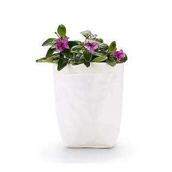 Amazon Com Extra Large White Green Plant Container Washable Kraft