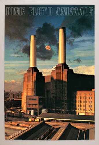 Pink Floyd Animals Poster in a White Plastic Frame  29295-PS