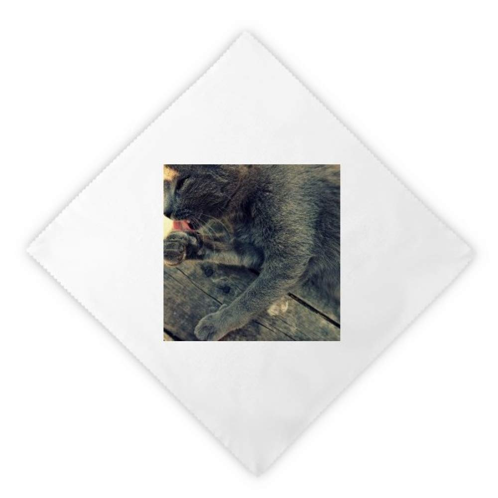 DIYthinker Animal Pattern Gray Cat Photograph Dinner Napkins Lunch White Reusable Cloth 2pcs