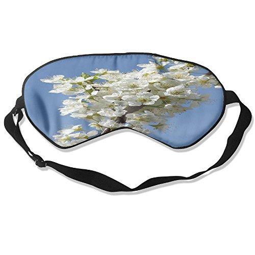 Spring Branch Eye Care