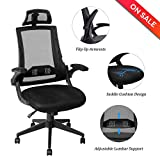 LCH Ergonomic High Back Mesh Office Chair - Adjustable Headrest,Flip-up Arms, 90°-110° Tilt Lock,Adjustable Back Lumbar Support Computer Desk Task Executive Chair,Black(BIMFA Certified)