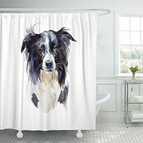 Border Collie Portrait (TOMPOP Shower Curtain Black Purebred Border Collie Portrait Dog Watercolor Adorable Animal Waterproof Polyester Fabric 72 x 72 inches Set with Hooks)