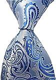 Allbebe Men's Classic Blue And White Jacquard Woven Silk Tie Formal Necktie