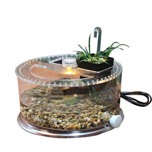 Office table fish tank, suitable for turtle, fish, reptile perfect ecological landscape box (turtle tank) by OMEM