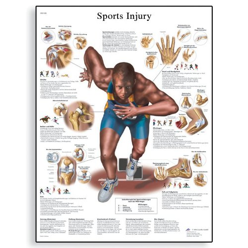 3B Scientific VR1188L Glossy Laminated Paper Sports Injuries Anatomical Chart, Poster Size 20″ Width x 26″ Height