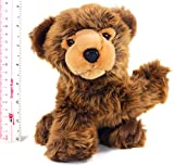 Boris the Baby Brown Grizzly Bear | 9 Inch Realistic Looking Stuffed Animal Plush | By VIAHART