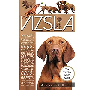 Vizsla; Hungarian; Wirehaired; dogs; puppies; for sale; rescue; breeders; breeding; training; showing; care; health; canine behavioural psychology 22