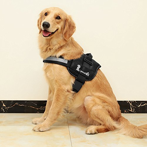 Very nice comfortable harness that is durable and strong
