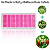 LED Grow Light, Plant Light WishDeal 2500W Grow