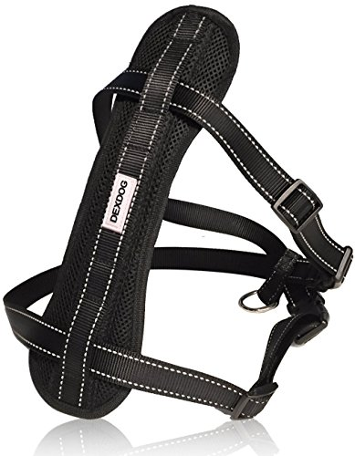 Grey Action Leather (DEXDOG Chest Plate Harness with Adjustable Straps, Reflective, Padded for X-Small Dogs - Black)