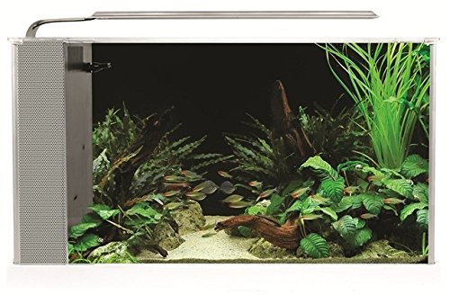 Fluval Spec V Aquarium Kit, 5-Gallon, White