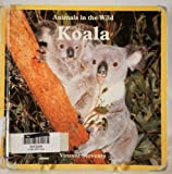 img - for Koala (Animals in the Wild) book / textbook / text book