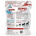 51Kseeje3uL. SS150  - Filler Free Premium Jerky Treats for Dogs