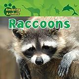 Raccoons, Karen Baicker, 1433940205