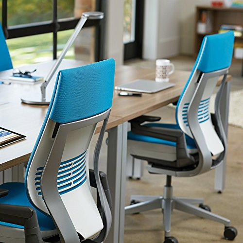 Right Cogency: Steelcase Gesture Chair, Blue Jay
