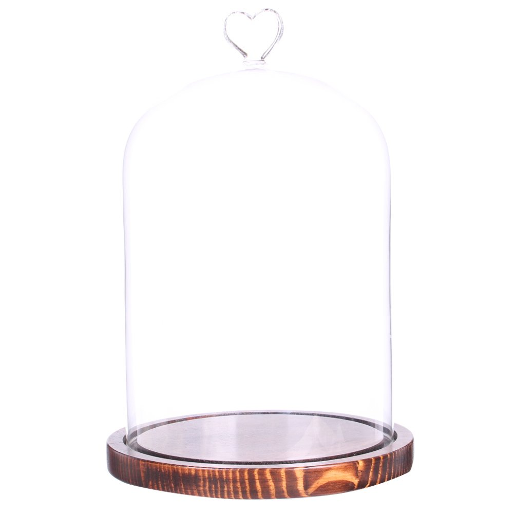Moonlear Clear Glass Dome Display Case Heart Handle Cloche With wood Base Dia 6'' H 8.5'' (Coffee Wood Base)