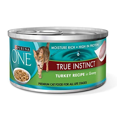 Purina ONE True Instinct Turkey Recipe in Gravy Wet Cat Food