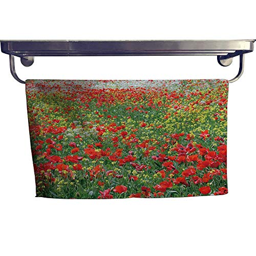 (Beach Towel, Poppies Blooming Hills of Siena,Super Soft & Absorbent Fade Resistant Cotton Terry Towel W 35.5