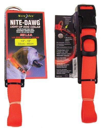 Nite Dawg Collar Orange MD