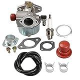 Panari 632795A Carburetor + Primer Bulb for Tecumseh 632046A 632078A 632099 TVS90 TVS105 TVS115 TVS120 TVS75 TVS100 ECV100 Engine Craftsman 4.5HP 5HP Craftsman Eager 1 Lawnmower