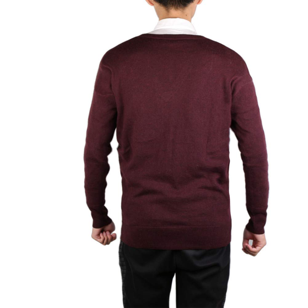 281b578c528 L.ROIINE Mens Sweaters Casual Slim Fit Long Sleeve Wool Pullover Solid V  Neck Knit Sweater at Amazon Men s Clothing store