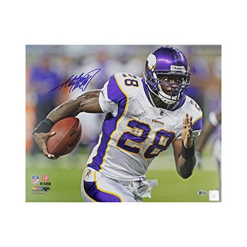 (Adrian Peterson Autographed Minnesota Vikings 16x20 Photo - BAS COA White Jersey)