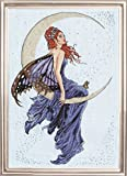 Design Works Blue Moon Counted Cross Stitch Kit