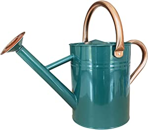 SunnyTong Galvanized Steel Watering Can Metal Watering Can for Outdoor Plants with Copper Accents, 1 Gallon, Green