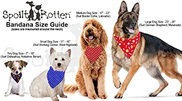 S4 For Chow Chow /& Newfoundland /& Ex Large Dogs Spoilt Rotten Pets Avengers Agents of SHIELD Avengers Logo S4 Dog Bandana Fancy Dress Cape For Superhero Dogs