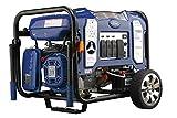 Best Diesel Generators - Ford FG11050PBE 11050W Peak Dual Fuel Generator Review