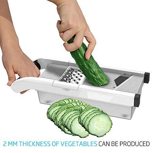 Vegetable & Fruit Grater & Julienne Slicer with 3 Stainless Steel Blades & Storage Container