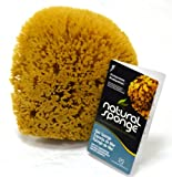 The Natural Sea Sponge, 6 to 7-Inch, Yellow