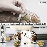 SunGrow Assorted Rabbit Balls, Made from