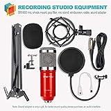 ZINGYOU Condenser Microphone Bundle, BM-800 PC